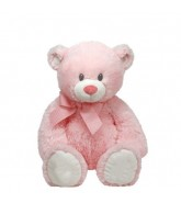 "Small Teddy (6"" Inch)"