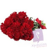 Bunch of red carnations
