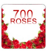 700 Red Roses