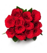 http://www.xpression4u.com/image/cache/data/Valentine%20Day/12_red_roses_Xpression_Jaipur-165x185.jpg